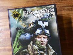Young Miniature: RAF Spitfire Mk1 Pilot WW2